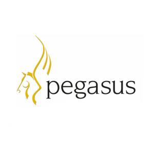 pegasus-1024x640